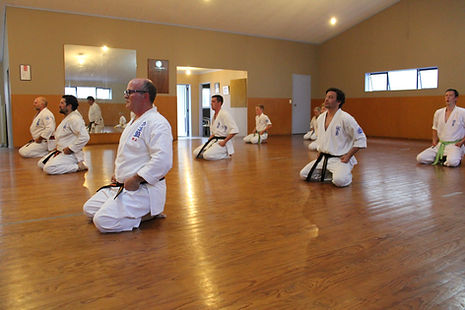 Karate Classes at Seido Karate Te Awamutu