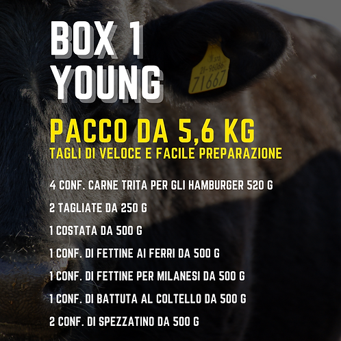 Box Young 5kg