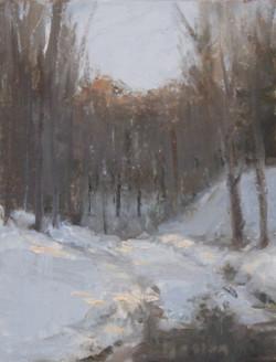 St. Mary's Winter, II