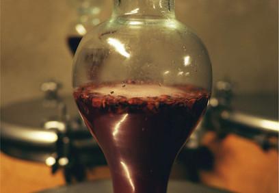 foradori-winery.jpg