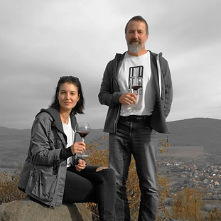 karner-wines.png