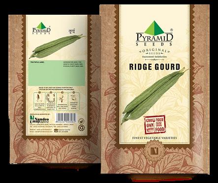 Ridge Ground