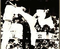 Budo | Martail Arts | Taekwondo | Karate-Do | Kung Fu  | Black RYU | Grandmasster Jerry Bell
