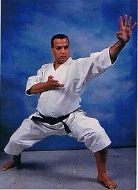 Budo | Martail Arts | Taekwondo | Karate-Do | Kung Fu  | Black RYU | Grandmasster Jerry Bell | Black RYU Federation