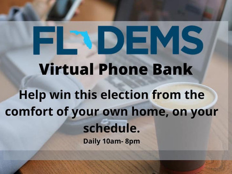 We Need YOU to Flip Florida BLUE!