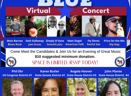 2020 Flip Florida Blue Virtual Concert