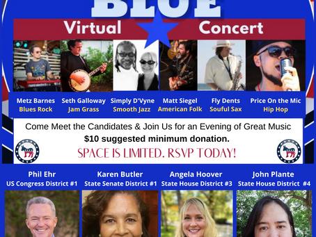2020 Flip Florida Blue Virtual Concert