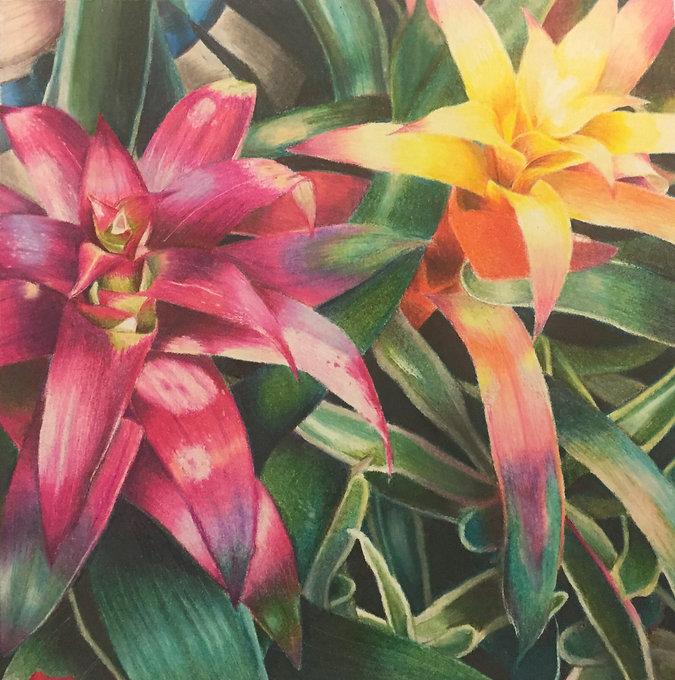 flowers_pencil.JPG