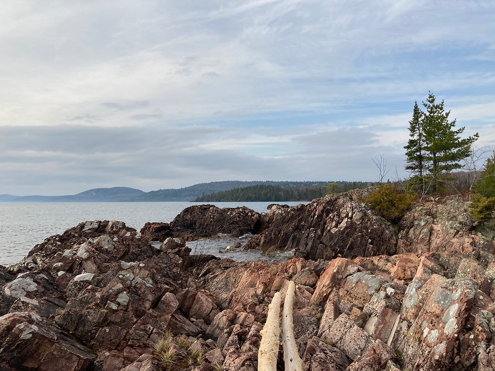 Fish_Cove_view_looking_south.JPG
