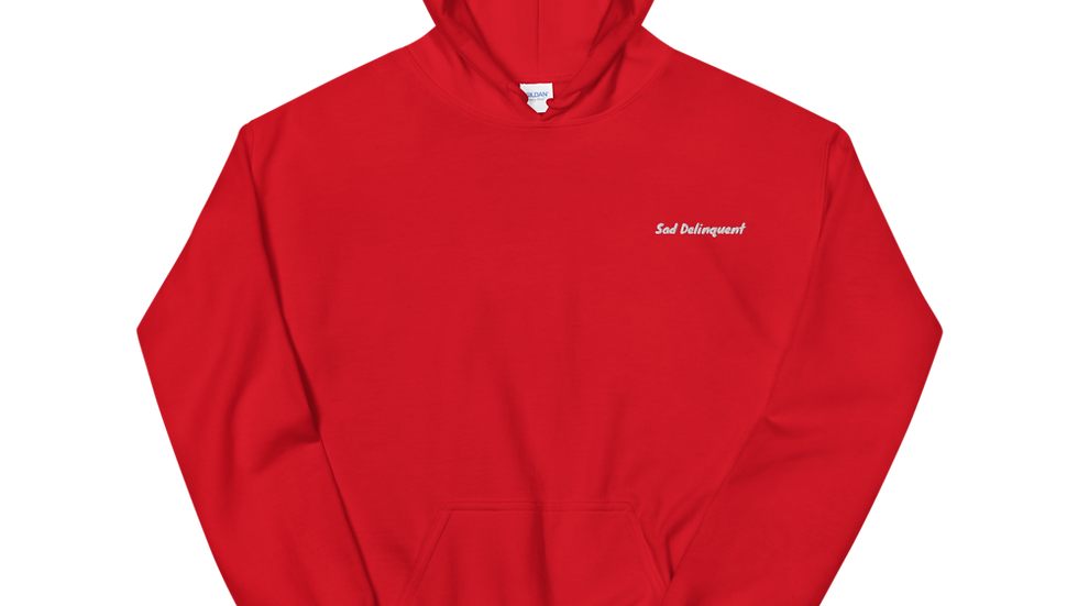 Sad Delinquent Embroidered Unisex Hoodie