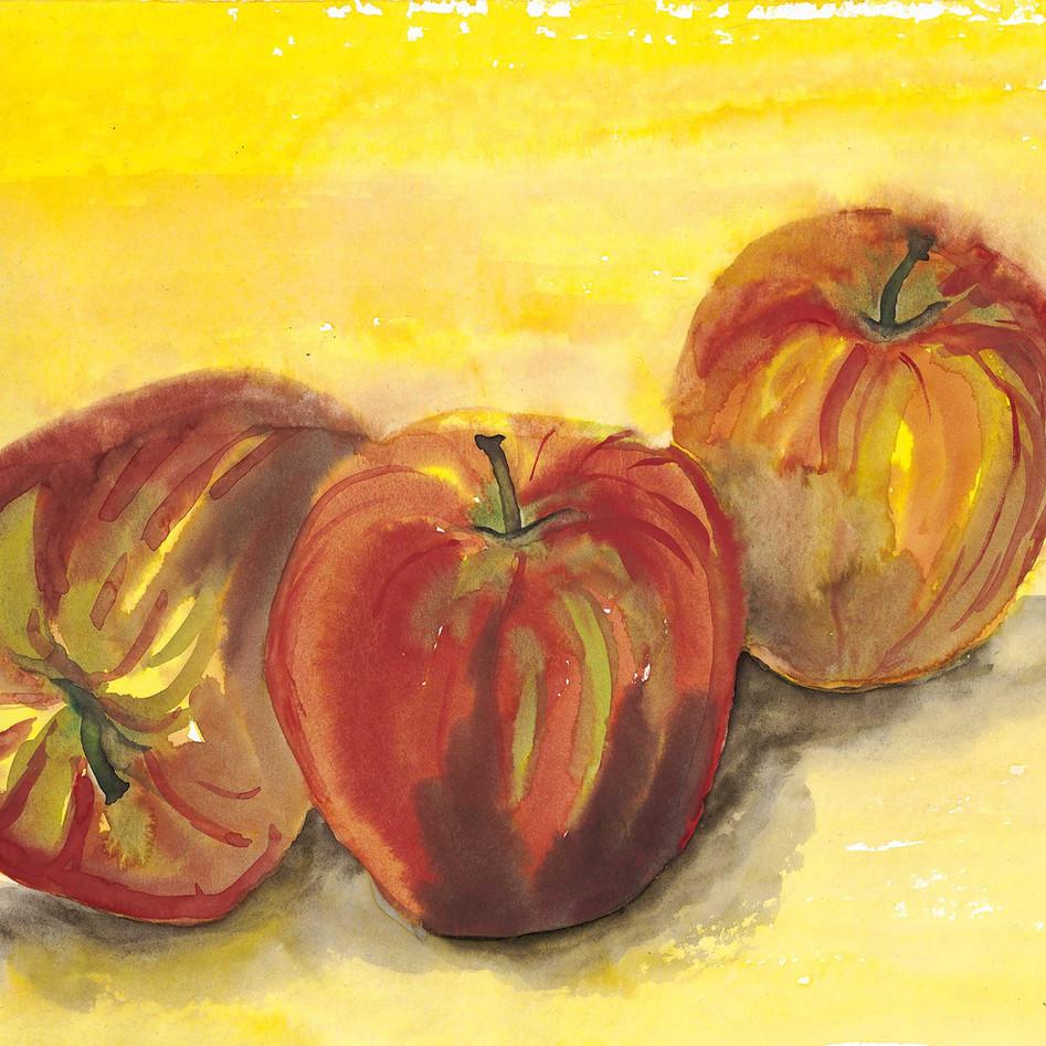 Pommes au soleil