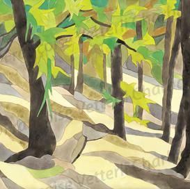 Rien n'arrêtait la forêt
