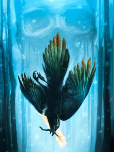 Journey of the Rainbow Crow