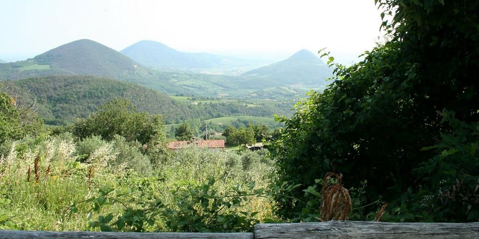 Camminata sul Monte Venda