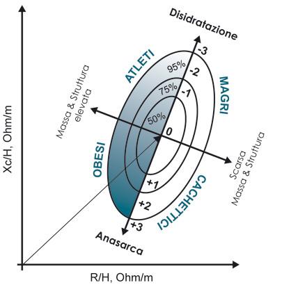 Interpretazione grafico Biavector
