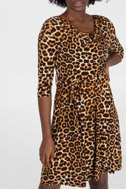 Leopard Print Cowl Neck Fit & Flare Dress