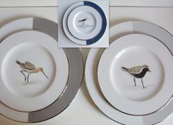 Oiseaux marins/filet platine