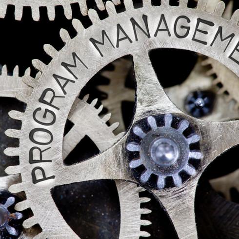 Project Governance Program Management