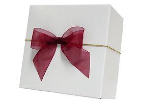 Box 10 with sheer bow EL Loop.jpg