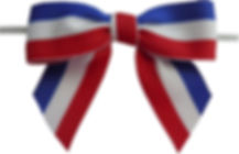 Patriotic Lg Bow.jpg