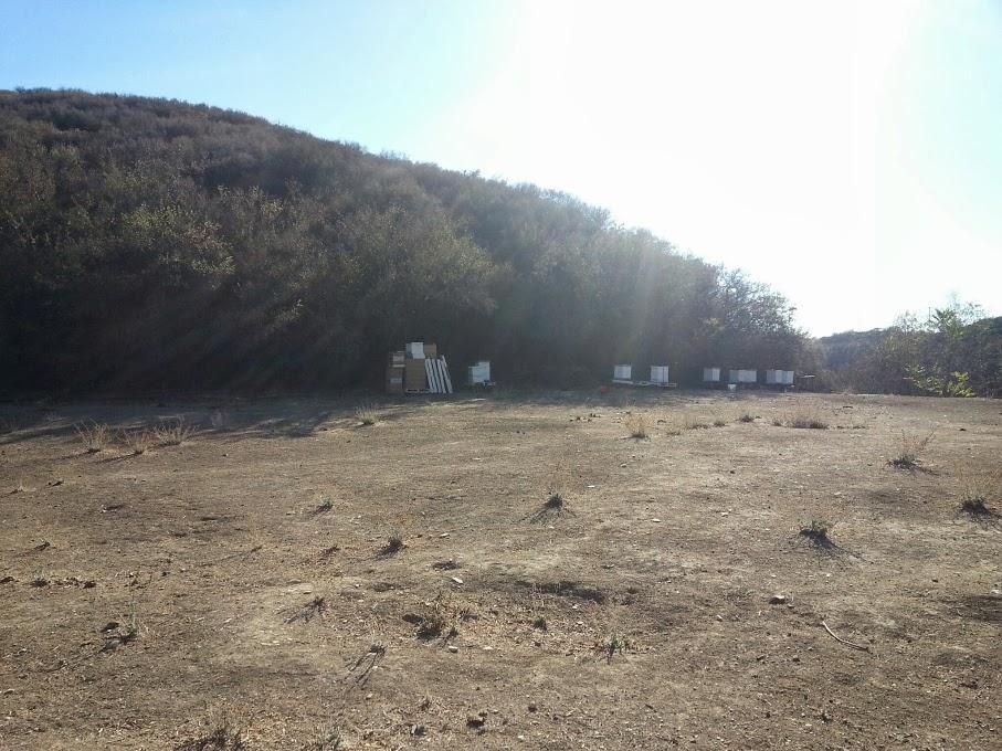 Farm Ranch #3