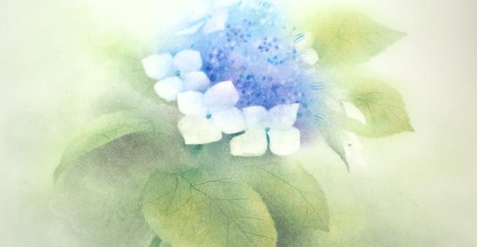 フラワーパステル画 杉本みのり 紫陽花