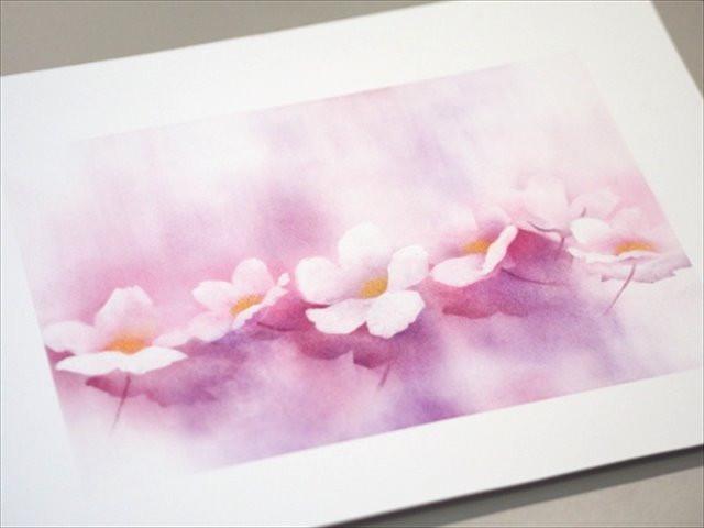 フラワーパステル画 杉本みのり 小花の構成