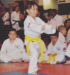 #wadokai #martialarts #shiai #hihonpower