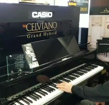 Bobby Nelson Hyrbrid Demo at Piano Trends Music.mp4