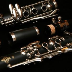 clarinet wood rental