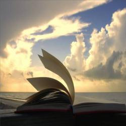 1-libri-al-vento2
