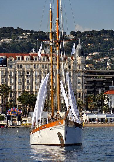 Team building - Vieux Gréements - Nice Cannes Monaco Antibes