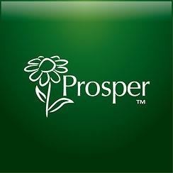 Prosper, Potpourri, Factory, OEM, ODM