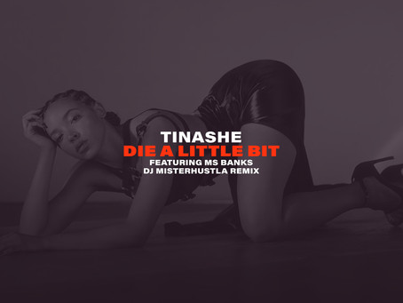 New Remix: Tinashe - Die A Little Bit (Afrobeats Remix)