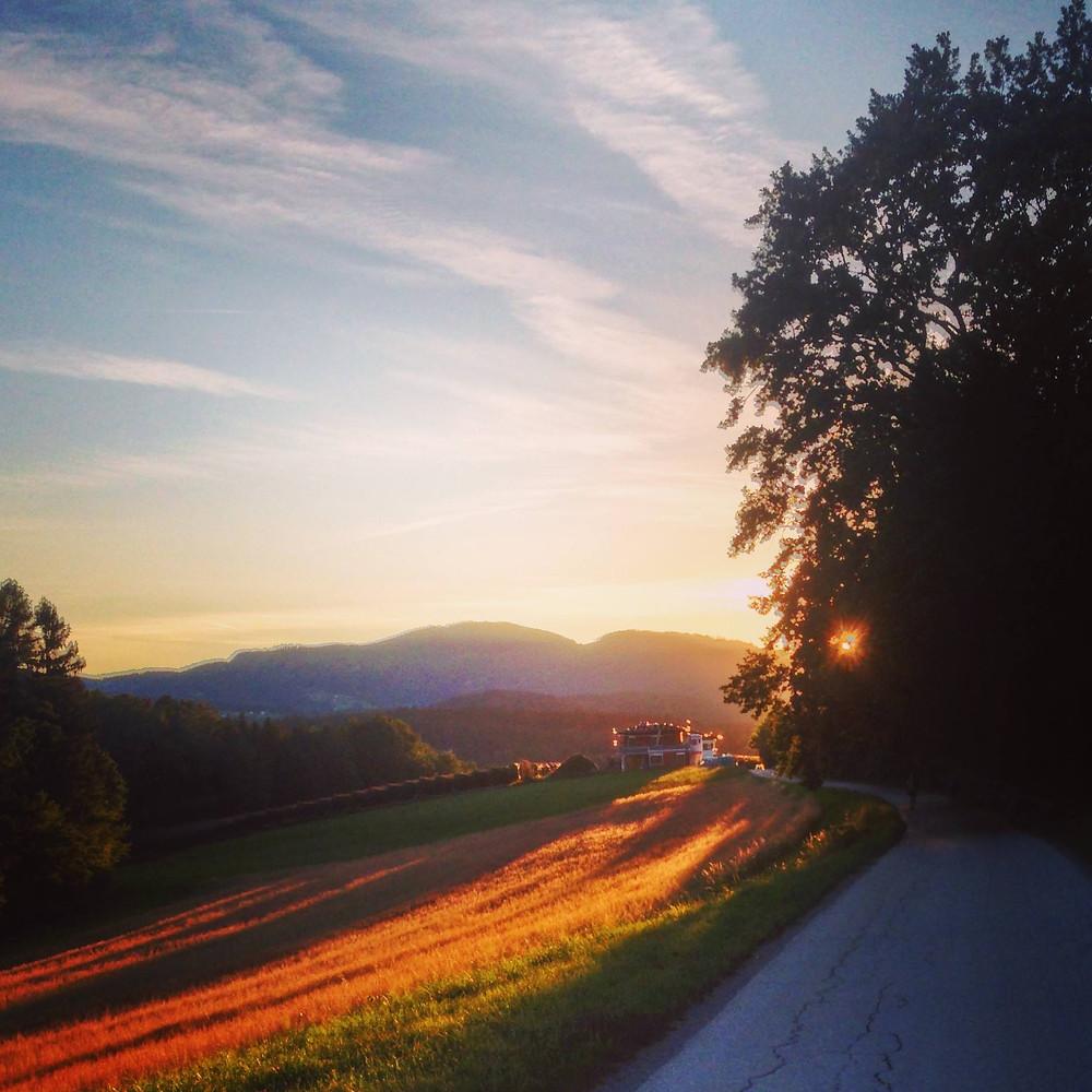 sunrise, tree, fields