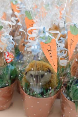 Peter Rabbit theme giftwrap.jpg