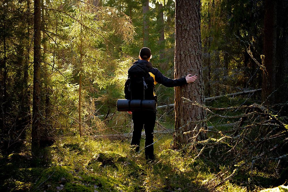 Man står vid ett träd i skogen