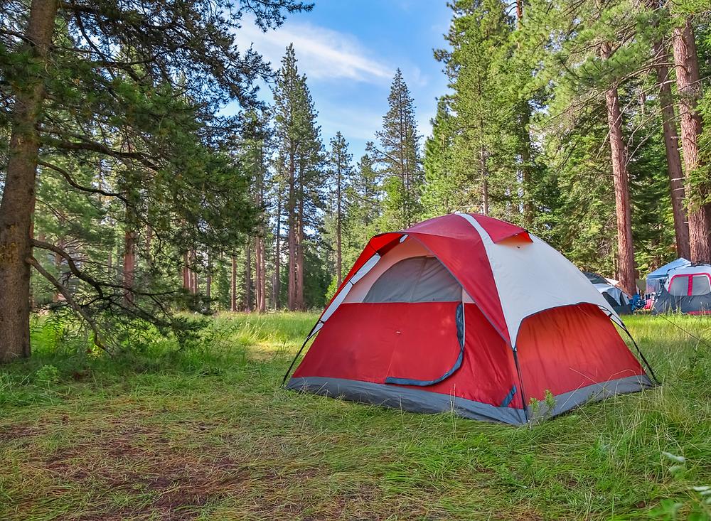 Tält i skogen på campingen