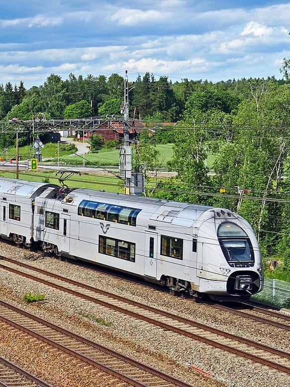 Tåg framför ett skogslandskap.