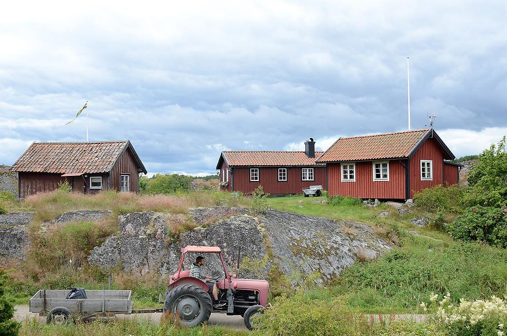Tre röda hus med vita knutar och en traktor i förgrunden