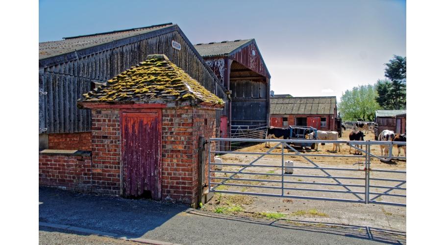32g Newhall Farm