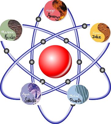 Las 5 fases medicina tradicional china