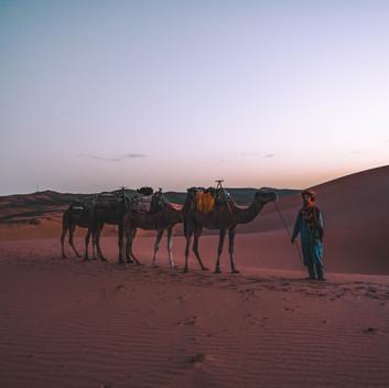 MERZOUGA LUXURY DESERT CAMP, plan the trip!