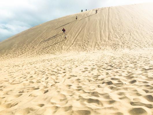 Sand Dunes - Cape Reinga