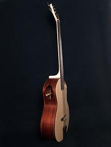 Basse-acoustique-portet-sur-garonne-luthier-j.melis-lutherie-toulouse