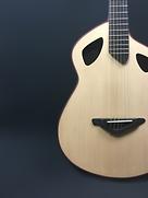 guitare-acoustiques-instruments-toulouse-j.melis