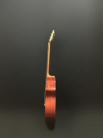 AcousticaP2_05