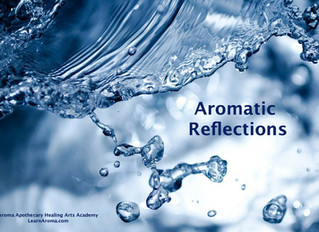 Aromatic Reflections