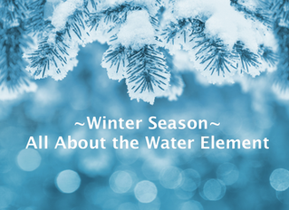 Winter Season- All About the Water Element