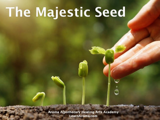 The Majestic Seed